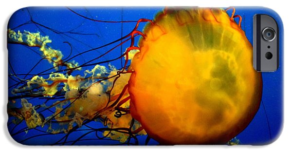 Abstract Expressionism iPhone Cases - Jellyfish iPhone Case by David Gilbert