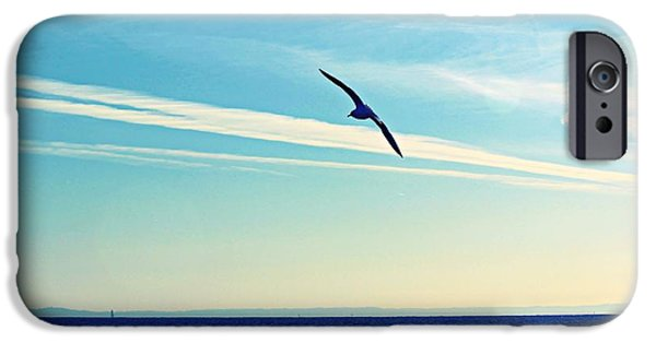 Sea Birds iPhone Cases - Jet Streams And Clouds iPhone Case by Kathy Henderson
