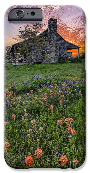 Dog Trots Photographs iPhone Cases - John P Coles Cabin and Spring Wildflowers at Independence - Old Baylor Park Brenham Texas iPhone Case by Silvio Ligutti