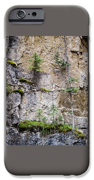 Ledge iPhone Cases - Johnson Canyon Banff National Park Canada iPhone Case by Mary Lee Dereske