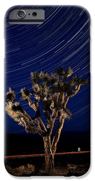 Joshua Tree And Star Trails iPhone Case by Steve Gadomski