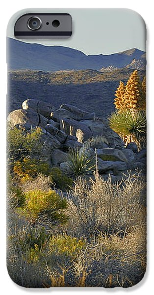 Joshua Tree National Park in California iPhone Case by Christine Till