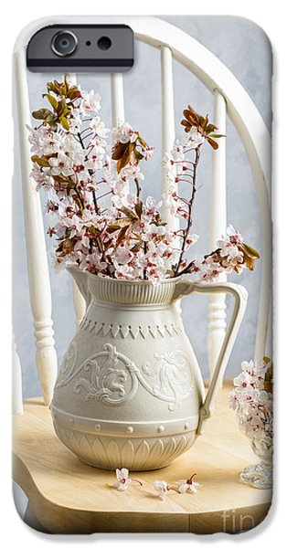 Interior Still Life iPhone Cases - Jug Of Spring Blossom iPhone Case by Amanda And Christopher Elwell