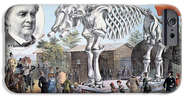 Sanger iPhone Cases - Jumbo Skeleton iPhone Case by Granger