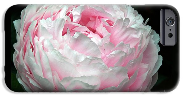 Flower Of Life iPhone Cases - Just A Hint Of Pink iPhone Case by Marcia Lee Jones