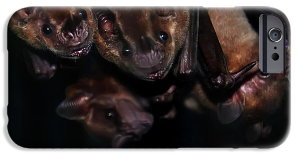 Bat Digital Art iPhone Cases - Just Hanging Around - Bats iPhone Case by Bill Cannon