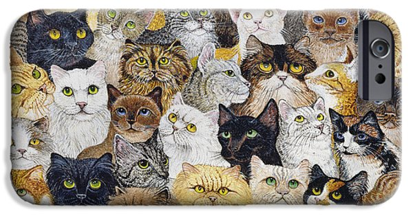 Cat Prints Drawings iPhone Cases - Just the Cats Whisker iPhone Case by Pat Scott