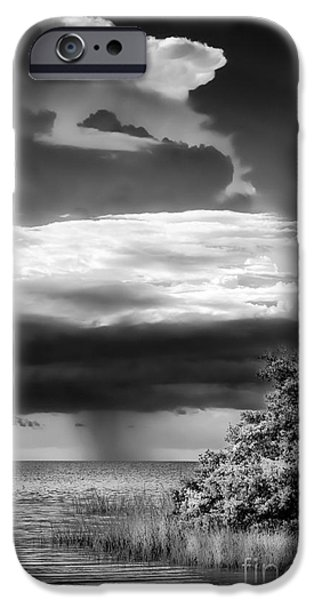 Park Scene iPhone Cases - Keep An Eye On The Sky iPhone Case by Marvin Spates