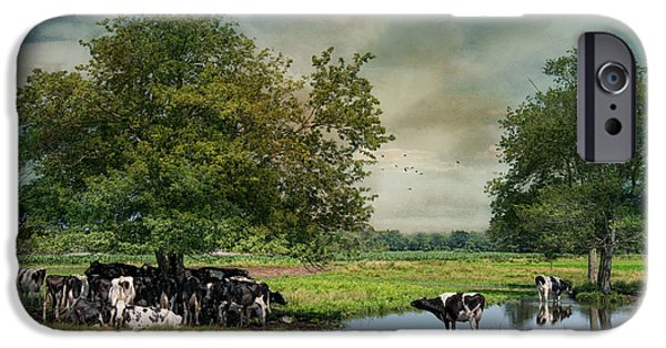 New England Dairy Farms iPhone Cases - Keepin Cool iPhone Case by Robin-lee Vieira