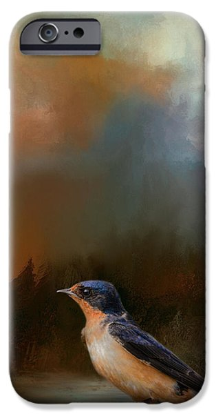 Barn Swallow iPhone Cases - Keeping Watch iPhone Case by Jai Johnson