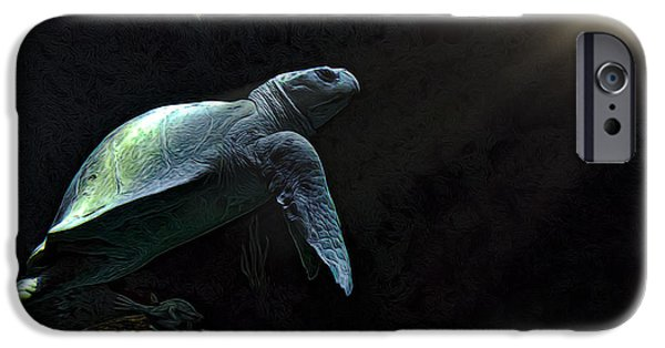 Kemp iPhone Cases - Kemps Sea Turtle 2 iPhone Case by Janet Fikar