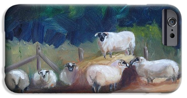 Haybales Paintings iPhone Cases - King of Green Hill Farm iPhone Case by Donna Tuten