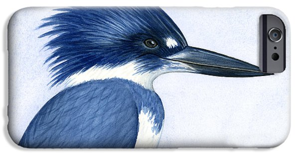 Sea Birds iPhone Cases - Kingfisher portrait iPhone Case by Charles Harden