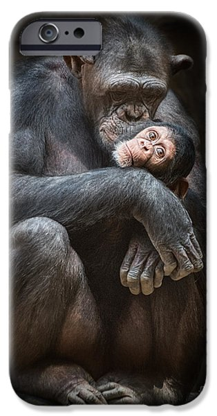 Ape iPhone Cases - Kiss from Mom iPhone Case by Jamie Pham