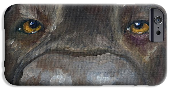 Chocolate Lab iPhone Cases - Kiss My Nose iPhone Case by Roger Wedegis