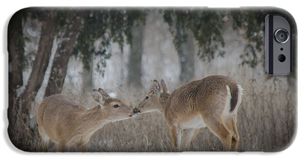 Winter Scene Pyrography iPhone Cases - Kissing Deer iPhone Case by Mark Burgess