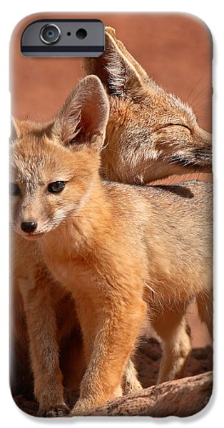 Kit Fox Mother Looking Over Pup iPhone Case by Max Allen
