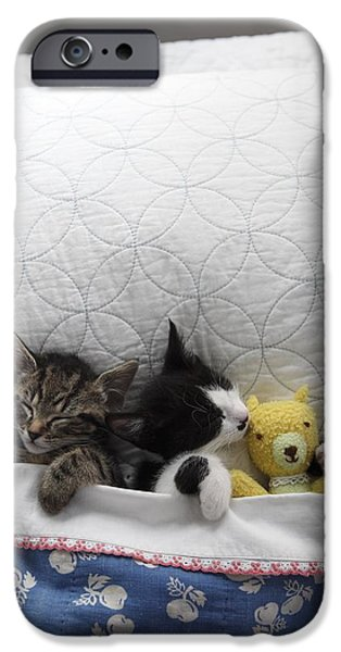 Stuffed Animal iPhone Cases - Kittens In Bed With Toy iPhone Case by Gillham Studios