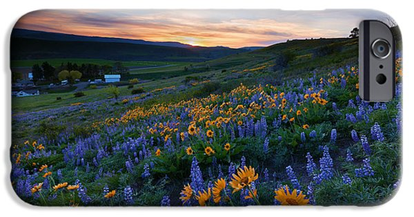 Spring iPhone Cases - Kittitas Spring Sunset iPhone Case by Mike Dawson