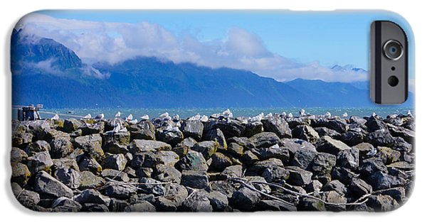 Sea iPhone Cases - Kittiwakes on Alaskan Jetty iPhone Case by Jennifer White
