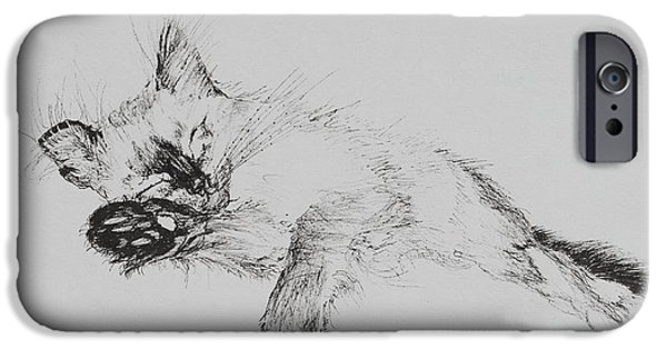 Lines Drawings iPhone Cases - Kitty iPhone Case by Vincent Alexander Booth