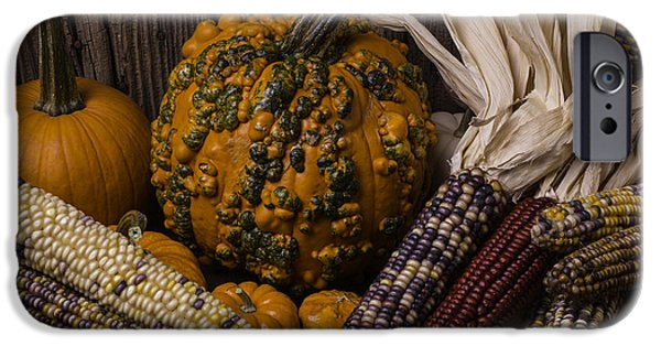 Strange iPhone Cases - Knuklehead Pumpkin And Indian Corn iPhone Case by Garry Gay