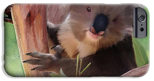 Time2paint iPhone Cases - Koala  Painting iPhone Case by Michael Greenaway