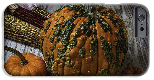 Fall iPhone Cases - Kunklehead With Corn iPhone Case by Garry Gay