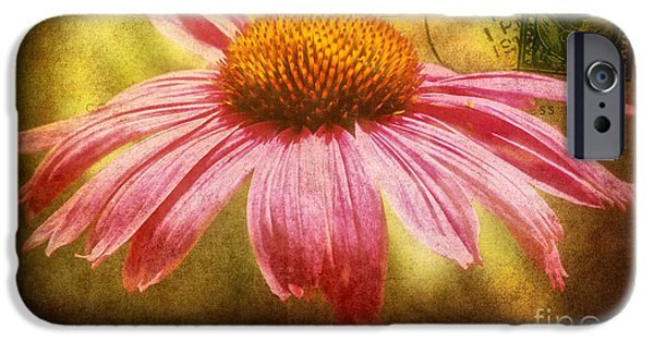Abstracted Coneflowers Mixed Media iPhone Cases - La fleur iPhone Case by Angela Doelling AD DESIGN Photo and PhotoArt