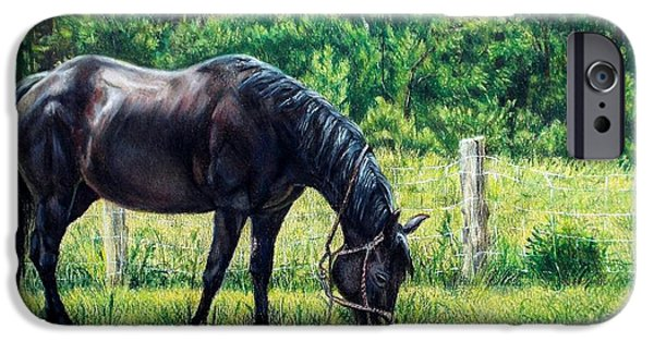 Horse iPhone Cases - Lady in Waiting iPhone Case by Shana Rowe