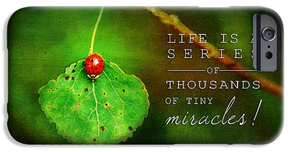 Miracle iPhone Cases - Ladybug on Leaf Thousand Miracles Quote iPhone Case by Christina VanGinkel