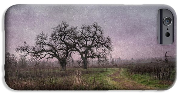 Recently Sold -  - Santa iPhone Cases - Laguna Twin Oaks iPhone Case by Catherine Pearson