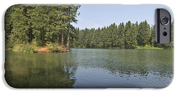 Tree Roots iPhone Cases - Lake and surrounding wilderness. iPhone Case by Gino Rigucci