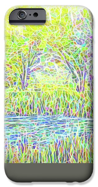 Rural iPhone Cases - Lake Reeds On A Sunny Day - Pond In Boulder County Colorado iPhone Case by Joel Bruce Wallach