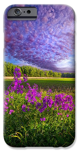 Floral Photographs iPhone Cases - Lamore De Ma Vie iPhone Case by Phil Koch