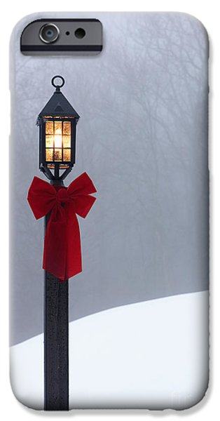 Lamppost in Snow iPhone Case by Will and Deni McIntyre