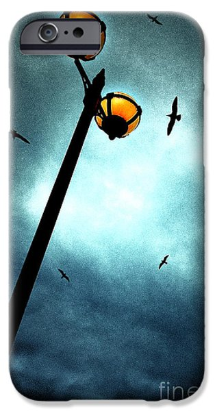 Lamp iPhone Cases - Lamps With Birds iPhone Case by Meirion Matthias