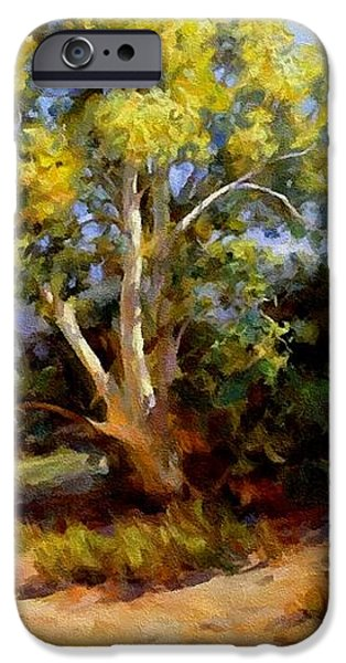 Business Pastels iPhone Cases - Landscape For James And Maureen St.Clair-Wicker H A iPhone Case by Gert J Rheeders