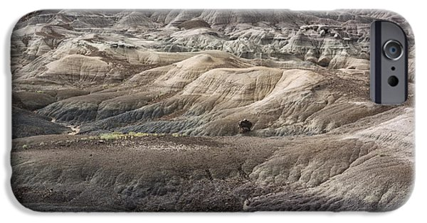 Petrified Forest Arizona iPhone Cases - Landscape With Many Colors iPhone Case by Melany Sarafis