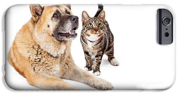 Working Breed iPhone Cases - Large Dog and Cat Looking Up Together iPhone Case by Susan  Schmitz