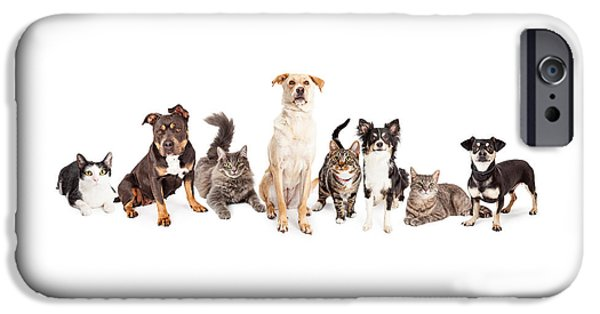 Animals Photographs iPhone Cases - Large Group of Cats and Dogs Together iPhone Case by Susan  Schmitz