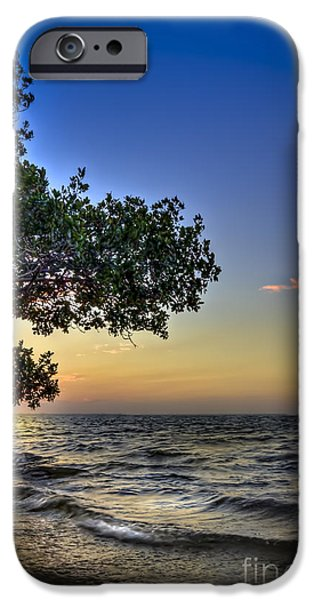 Park Scene iPhone Cases - Last Light iPhone Case by Marvin Spates
