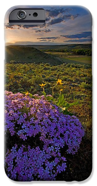 Last Light of Spring iPhone Case by Mike  Dawson