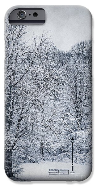 Prospects iPhone Cases - Last Winters Dream iPhone Case by Evelina Kremsdorf