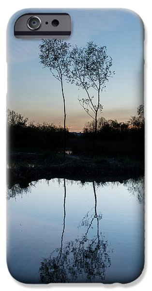 Trees Reflecting In Water iPhone Cases - Late Evening Reflections II iPhone Case by Marco Oliveira