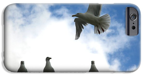 Seagull iPhone Cases - Later Guys Im Out iPhone Case by Kreddible Trout