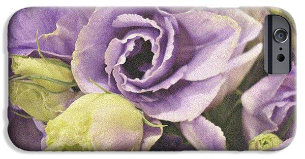 Floral Photographs iPhone Cases - Lavender Dreams iPhone Case by Kathy Bucari