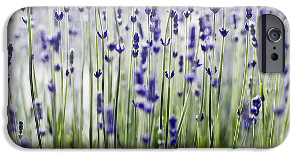 Printscapes - iPhone Cases - Lavender Patterns iPhone Case by Ray Laskowitz - Printscapes