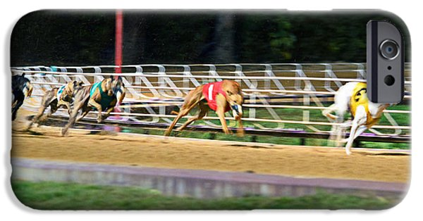 Dog Race Track iPhone Cases - Leader Of The Pack iPhone Case by Keith Armstrong