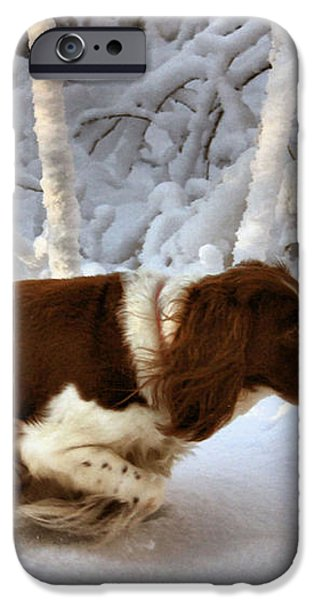 Leading the Way iPhone Case by Kristin Elmquist
